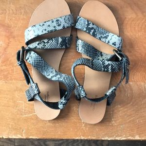 Snake skin Sandals from Urban Outfitters. Size:8